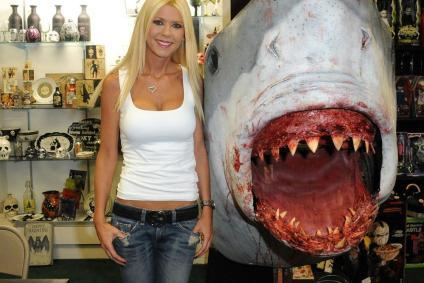 tara-shark