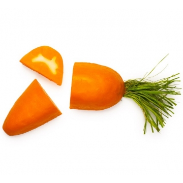 6497-carrot-soap_WEB-1-360x360