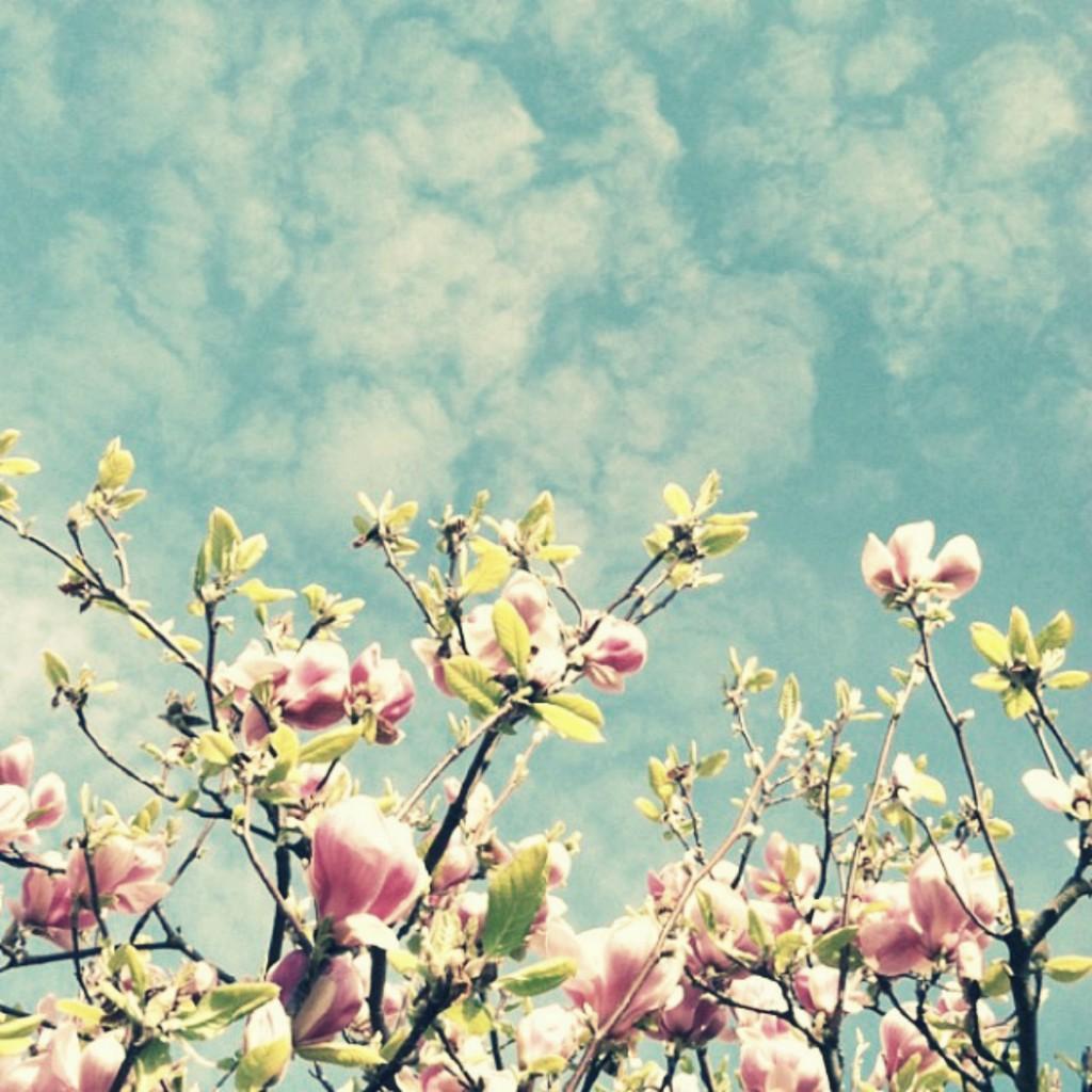 tavaszi top 10 parfüm2