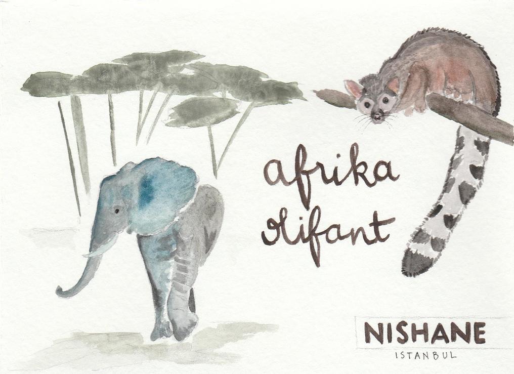 afrika-oliphant