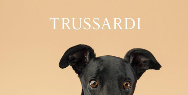 Trussardi_dog_feeldesain_00
