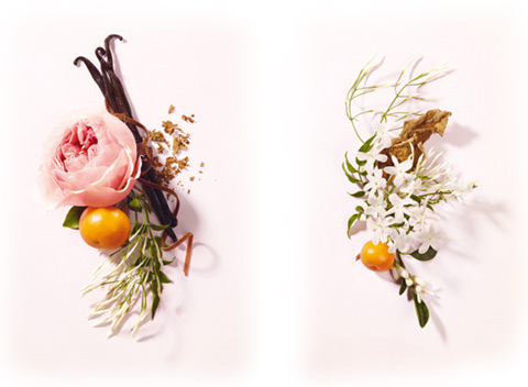 rozsa-es-pacsuli