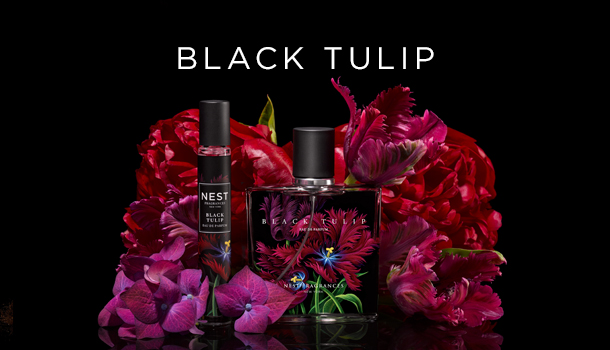 black-tulip-collection__2x