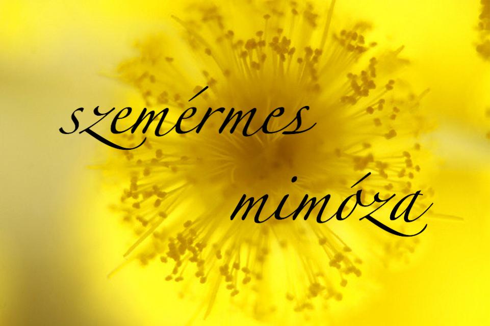 szemérmes mimóza parfümblog