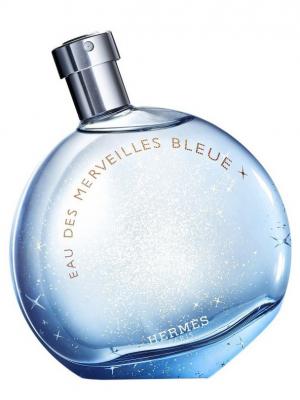 hermés eau des merveilles bleue parfümblog2