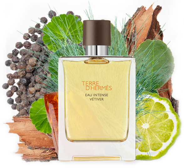 Hermés Terre d'Hermés Eau Intense Vetiver – parfümkritika